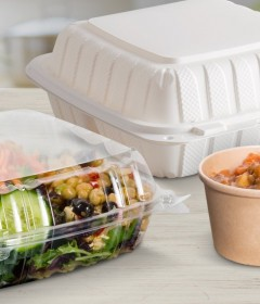 Disposable Take Out Food Products